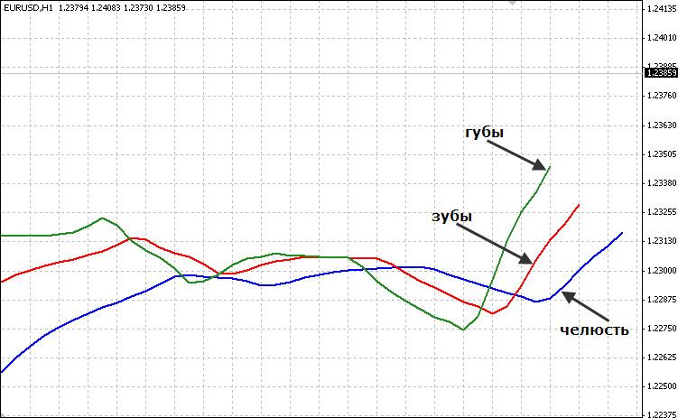 Торговая Форекс стратегия Энтропия Аллигатор2