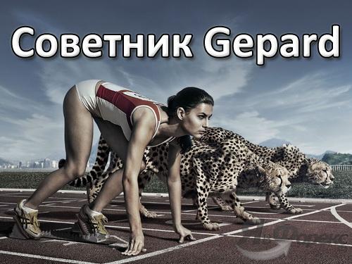Форекс советник Gepard